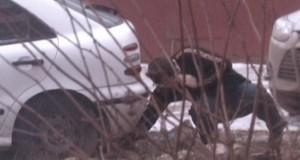 23.01.2014 Вместо порошка какао – порошок с героином  uvs140122-006
