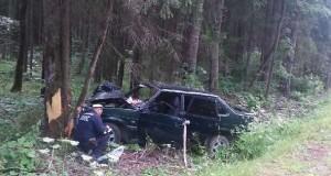 Машина в дерево