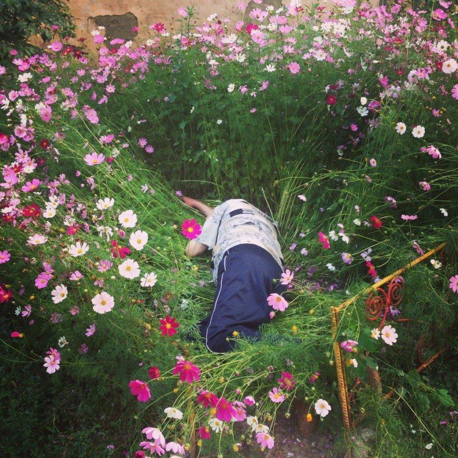 Сонник хассе огород, прохаживаться по нему — счастье; работать на нем — достигнешь уважения; красивый со множеством цветов — достижение; заброшенный — окружают тебя фальшивые советчики; с высокой оградою — просьба твоя будет отвергнута.